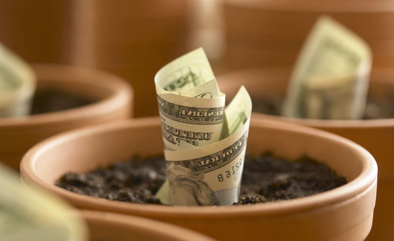 Как привлечь инвестиции без рисков